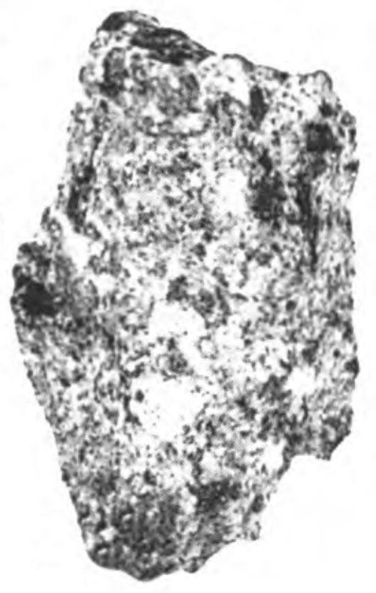 Garraf-07-MB.jpg