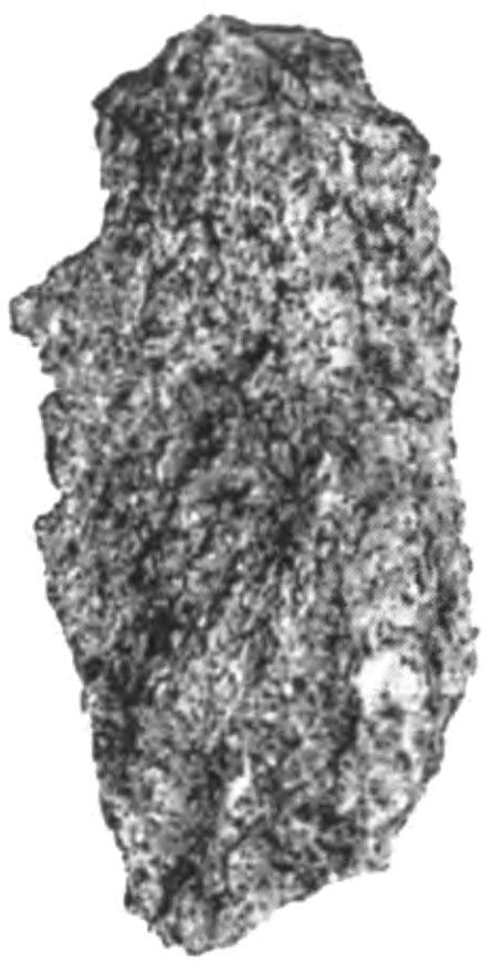 Garraf-08-MB.jpg