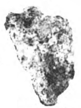 Garraf-10-MB.jpg