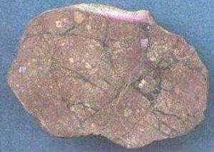 En este meteorito brechado se pueden ver abundantes venas negras del choche.